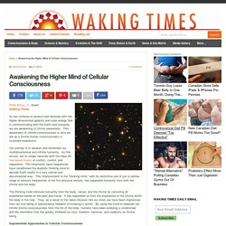 Awakening the Higher Mind of Cellular Consciousness