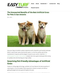 Awesome Benefits of the Best Artificial Grass for Pets in San Antonio