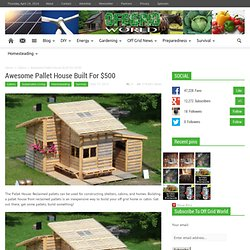 Awesome Pallet House Built For $500