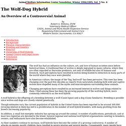 AWIC Newsletter: The Wolf-Dog Hybrid