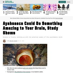 Ayahuasca Benefits: What Is Ayahuasca, What It Does to Your Brain