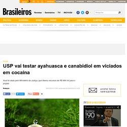 USP vai testar ayahuasca e canabidiol em viciados em cocaína