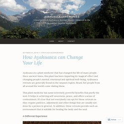 How Ayahuasca can Change Your Life – Ayahuasca Ceremonies