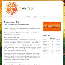 The Ayahuasca Diet - Gaia Tree Center