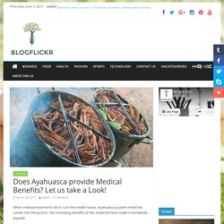 Does Ayahuasca provide Medical Benefits? Let us take a Look! - Blog Flicker