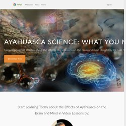 Ayahuasca Science: What You Need to Know