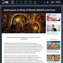 Ayahuasca: The story of Death, Rebirth and Love