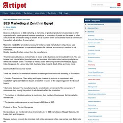B2B Marketing at Zenith in Egypt