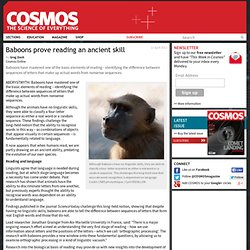 Baboons prove reading an ancient skill