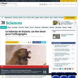 Le babouin de Guinée, un être doué pour l'orthographe
