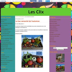Le bac sensoriel de l'automne - Les Clix