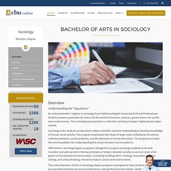 Bachelor of Arts in Sociology - CBU Online and Professional Studies