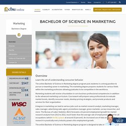 Bachelor of Science in Marketing Degree Online