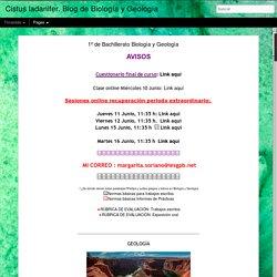 Cistus ladanifer. Blog de Biología y Geología