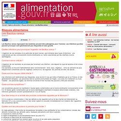 ALIMENTATION_GOUV_FR 06/09/11 Les Bacillus cereus