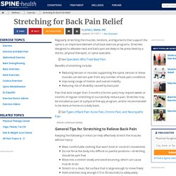 exercices to stretch the back