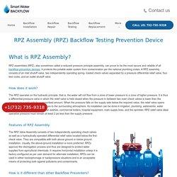 RPZ Backflow Preventer