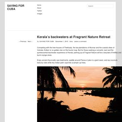 Kerala's backwaters at Fragrant Nature Retreat