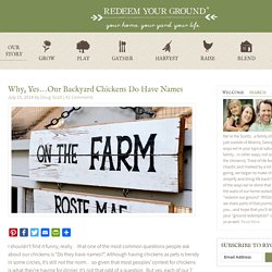 Chicken Coop Sign