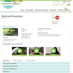 Backyard Ecosystem