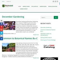 Backyard Gardener, Your Gardening Information with Gardening Tips