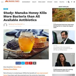 Study: Manuka Honey Kills More Bacteria than All Available Antibiotics