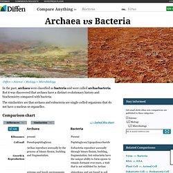 Archaebacteria v. Eubacteria