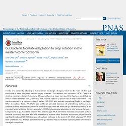 Proc Natl Acad Sci U S A. 2013 Jul 16;110(29):11917-22. Gut bacteria facilitate adaptation to crop rotation in the western corn