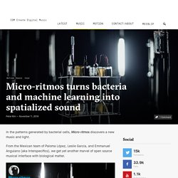 Micro-ritmos turns bacteria and machine learning into spatialized sound - CDM Create Digital Music