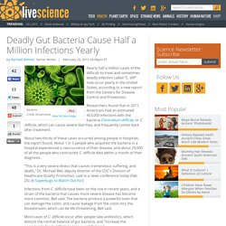 Deadly Gut Bacteria Causes Nearly Half a Million Infections Yearly