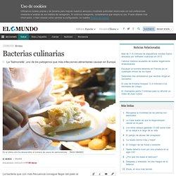 Bacterias culinarias