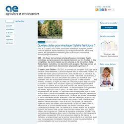 AGRICULTURE ET ENVIRONNEMENT 23/07/15 Quelles pistes pour éradiquer Xylella fastidiosa ?