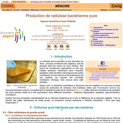 CELLULOSE BACTERIENNE