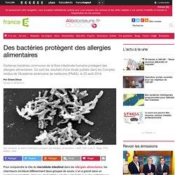 Des bactéries protègent des allergies alimentaires