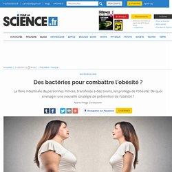 Des bactéries pour combattre l'obésité?