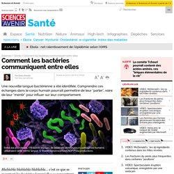Comment les bactéries communiquent entre elles