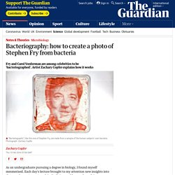 Bacteriography: how to create a photo of Stephen Fry from bacteria