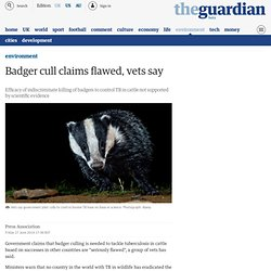 Badger cull claims flawed, vets say