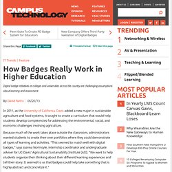 How Badges Really Work in Higher Education