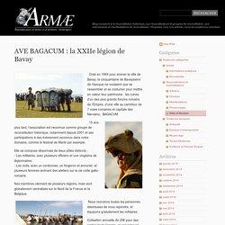 AVE BAGACUM : la XXIIe légion de Bavay