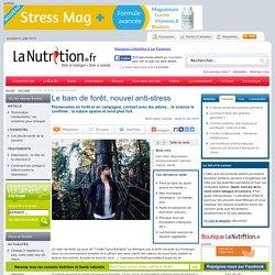 Le bain de forêt, nouvel anti-stress