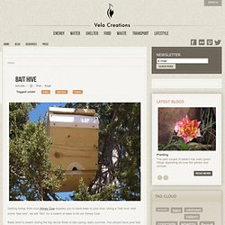 Vela Creations - Bait Hive