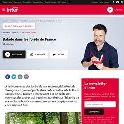 FRANCE INTER 15/05/20 GRAND BIEN VOUS FASSE ! Balade dans les forêts de France