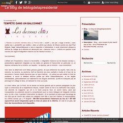 TEMPÊTE DANS UN BALCONNET - Le blog de leblogdelapresidente