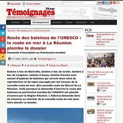 Route des baleines de l'UNESCO: la route en mer à La Réunion plombe le dossier - Environnement
