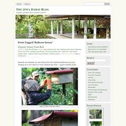 The Jiwa Damai Blog