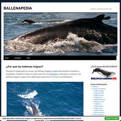 ¿Por qué las ballenas migran? » BALLENAPEDIA