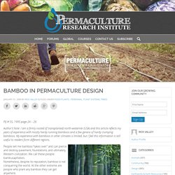Bamboo in Permaculture Design