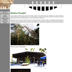 Bamboo Thoughts DeBoer Architects