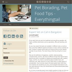 Pet Food Tips by Expert: Everythingtail